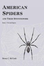American Spiders and Their Spinningwork, Book 1