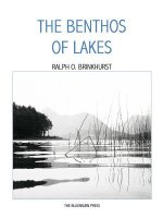 Benthos of Lakes