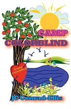 Camp Colorblind