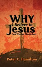 Why I Believe in Jesus (and Why You Should, Too)