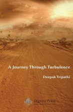 Journey Through Turbulence