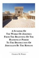 Synopsis of the Works of Josephus from the Beginning If the Hasmonean Period to the Destruction of Jerusalem by the Romans