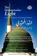 Muhammadan Light in the Qur'an, Sunna, and Companion Reports