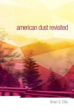 American Dust Revisited