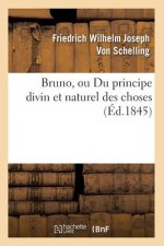Bruno, Ou Du Principe Divin Et Naturel Des Choses (Ed.1845)