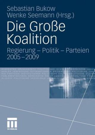 Die Grosse Koalition