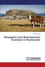 Kisspeptin and Reproductive Function in Ruminants