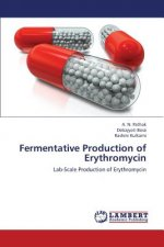 Fermentative Production of Erythromycin
