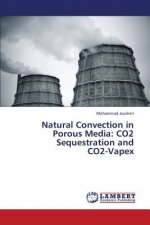 Natural Convection in Porous Media