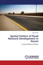 Spatial Pattern of Road Network Development in Assam