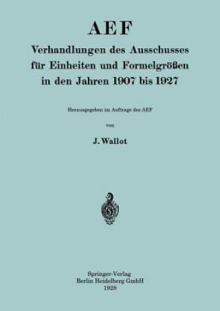 Aef Verhandlungen Des Ausschusses F r Einheiten Und Formelgr  en in Den Jahren 1907 Bis 1927