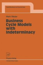Business Cycle Models with Indeterminacy