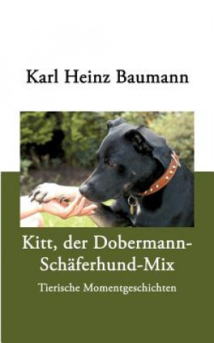 Kitt, der Dobermann-Schaferhund-Mix