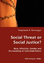 Social Threat or Social Justice?