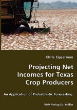 Projecting Net Incomes for Texas Crop Producers - An Application of Probabilistic Forecasting