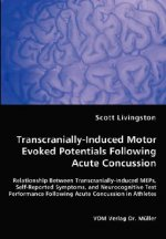 Transcranially-Induced Motor Evoked Potentials Following Acute Concussion