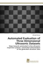 Automated Evaluation of Three Dimensional Ultrasonic Datasets