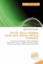 2010-2011 Middle East and North Africa Protests