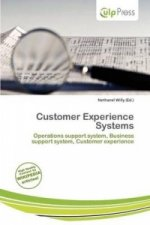 Customer Experience Systems