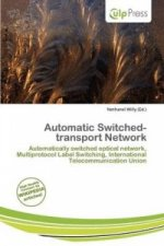Automatic Switched-Transport Network