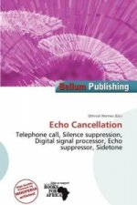 Echo Cancellation