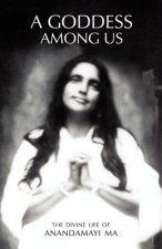 Goddess Among Us