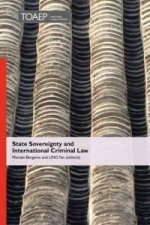 State Sovereignty and International Criminal Law