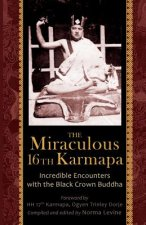 Miraculous 16th Karmapa