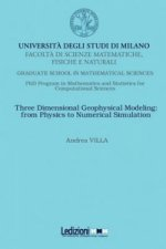 Three Dimensional Geophysical Modeling