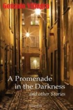 Promenade in the Darkness and Other Stories