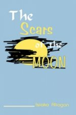 Scars of the Moon