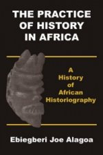 Practice of History in Africa