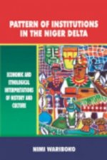 Pattern of Institutions in the Niger del