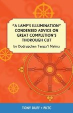Lamp's Illumination Condensed Advice on Great Completion's Thorough Cut
