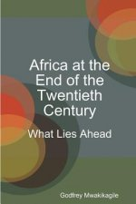 Africa at the End of the Twentieth Century