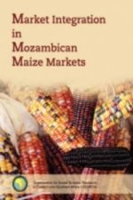 Market Integration in Mozambican Maize M