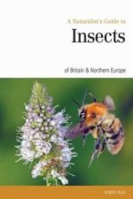 Naturalist's Guide to the Insects of Britain & Northern Irel