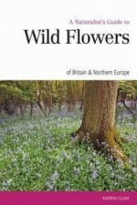 Naturalist's Guide to the Wild Flowers of Britain & Europe