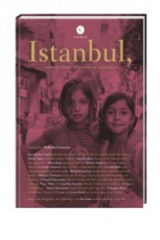 Istanbul, sterbende Schöne zwischen Orient und Okzident?