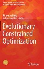 Evolutionary Constrained Optimization