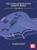 BACHS SONATAS & PARTITAS FOR SOLO VIOLIN