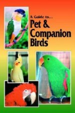 Guide to Pet and Companion Birds