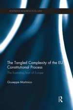 Tangled Complexity of the EU Constitutional Process