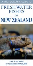 Photographic Guide to Freshwater Fishes of New Zealand