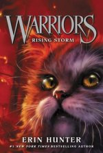 Warriors, Rising Storm