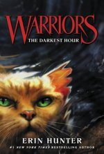 Warriors, The Darkest Hour