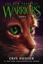 Warriors, The New Prophecy, Dawn