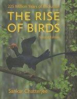 Rise of Birds