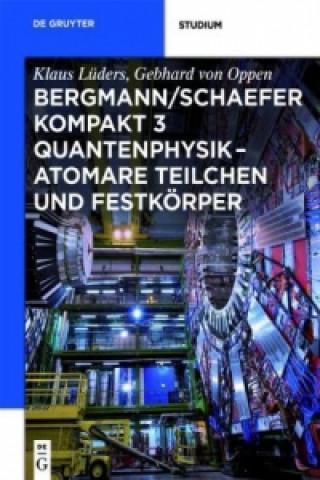 Quantenphysik - Atomare Teilchen und Festkörper