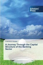 Journey Through the Capital Structure of the Banking Sector
